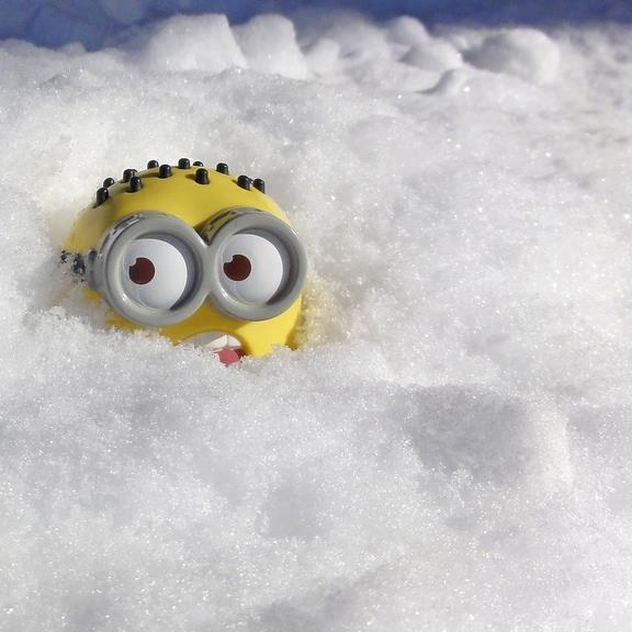 картинки миньоны в снегу как хочется побывать